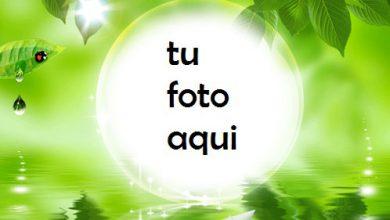 Photo of Falta Para El Verano Marco Para Foto