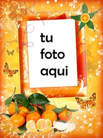 Felicidad Mandarina Marco Para Foto - Felicidad Mandarina Marco Para Foto
