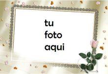 Flor De Amor Matrimonio Y Compromiso Marco Para Foto 220x150 - Flor De Amor Matrimonio Y Compromiso Marco Para Foto