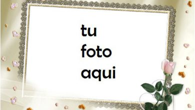 Flor De Amor Matrimonio Y Compromiso Marco Para Foto 390x220 - Flor De Amor Matrimonio Y Compromiso Marco Para Foto