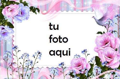 Flores De La Mañana Marco Para Foto - Flores De La Mañana Marco Para Foto
