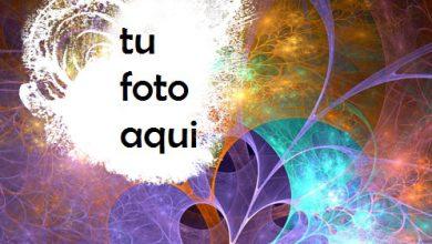 Flores De La Noche Romántica Marco Para Foto 390x220 - Flores De La Noche Romántica Marco Para Foto