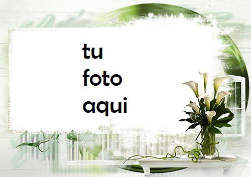Flores De Loto Blanco Marco Para Foto - Flores De Loto Blanco Marco Para Foto