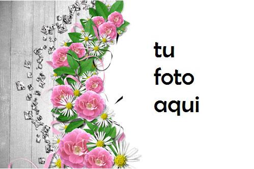 Flores De Mandolina Marco Para Foto - Flores De Mandolina Marco Para Foto