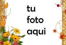 Flores Doradas Marco Para Foto 220x150 - Flores Doradas Marco Para Foto