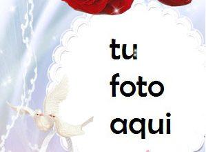 Photo of Flores Para Matrimonio Y Compromiso Marco Para Foto
