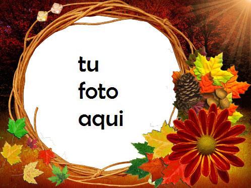 Flores de otoño Marco Para Foto - Flores de otoño Marco Para Foto
