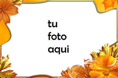 Flores de otoño en otoño Marco Para Foto - Flores de otoño en otoño Marco Para Foto