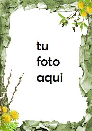 Flores mariposas y plantaciones verdes Marco Para Foto - Flores mariposas y plantaciones verdes Marco Para Foto