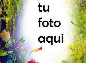 Photo of Flores para niñas Marco Para Foto