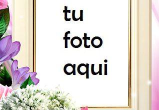 Flores romanticas muy hermosas Marco Para Foto 318x220 - Flores romanticas muy hermosas Marco Para Foto