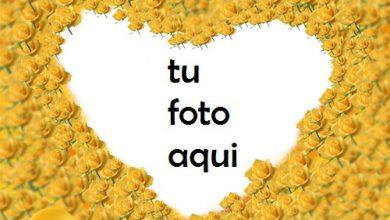 Photo of Flores y flores de abedul hermosa forma de corazón Marco Para Foto