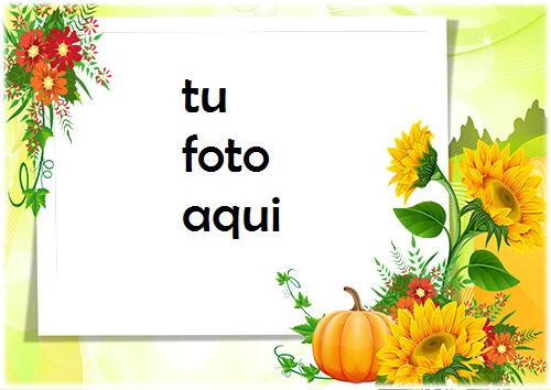 Girasoles Y Calabaza Marco Para Foto - Girasoles Y Calabaza Marco Para Foto