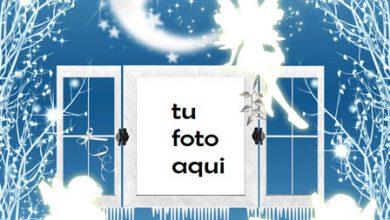 Hadas De Invierno Marco Para Foto 390x220 - Hadas De Invierno Marco Para Foto