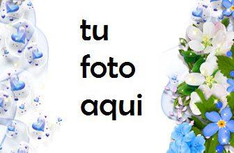 Hermosa Colección De Rosas Azules Marco Para Foto 336x220 - Hermosa Colección De Rosas Azules Marco Para Foto