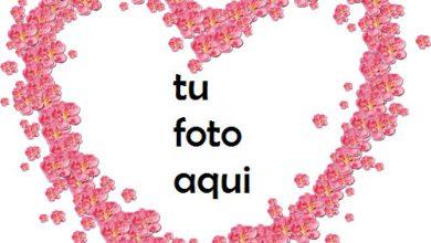 Photo of Hermosas flores rojas en forma de corazón Marco Para Foto