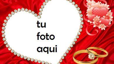 Hermoso Corazón Rojo Y Anillo De Bodas De Diamantes Marco Para Foto 390x220 - Hermoso Corazón Rojo Y Anillo De Bodas De Diamantes Marco Para Foto