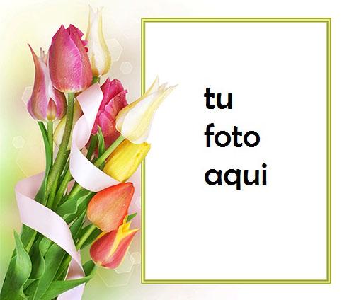 Hermoso Y Suave Ramo De Flores De Primavera Marco Para Foto - Hermoso Y Suave Ramo De Flores De Primavera Marco Para Foto