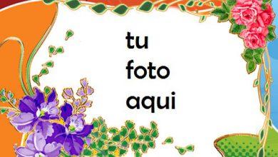Hermosos Colores De Amor Marco Para Foto 390x220 - Hermosos Colores De Amor Marco Para Foto
