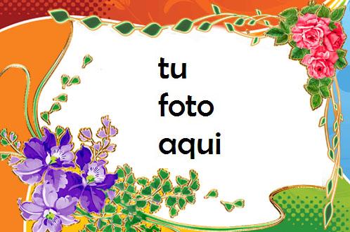 Hermosos Colores De Amor Marco Para Foto - Hermosos Colores De Amor Marco Para Foto