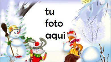 Photo of Hombre De Nieve Y Amigos Marcos Para Foto