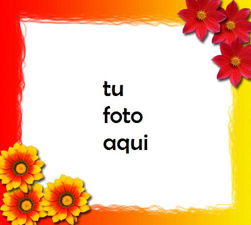 Imagen De Flores Rojas Y Naranjas Día De San Valentín Marco Para Foto - Imagen De Flores Rojas Y Naranjas Día De San Valentín Marco Para Foto