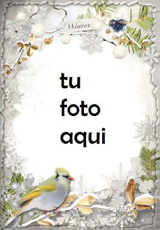 Invierno Tocando La Puerta Marco Para Foto - Invierno Tocando La Puerta Marco Para Foto