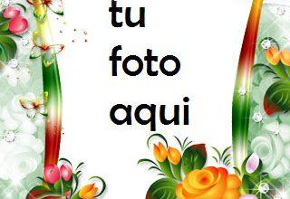 Jardín Del Amor Marco Para Foto 320x220 - Jardín Del Amor Marco Para Foto