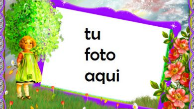 Jardín de flores Marco Para Foto 390x220 - Jardín de flores Marco Para Foto