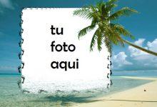 La Orilla Del Mar Marco Para Foto 220x150 - La Orilla Del Mar Marco Para Foto