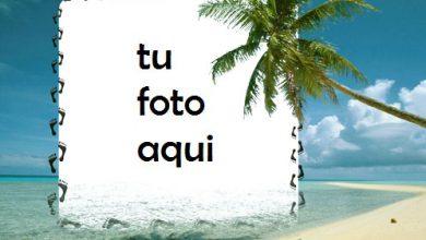 La Orilla Del Mar Marco Para Foto 390x220 - La Orilla Del Mar Marco Para Foto