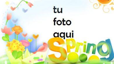 La Primavera Está Llegando Marco Para Foto 390x220 - La Primavera Está Llegando Marco Para Foto