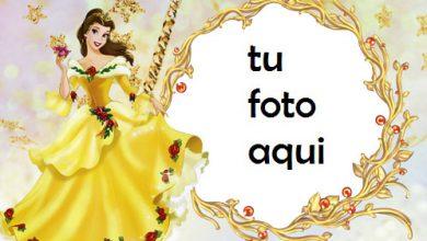 La Princesa Encantada Marcos Para Foto 390x220 - La Princesa Encantada Marcos Para Foto