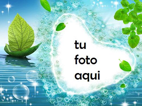 La Rosa Del Nilo Marco Para Foto - La Rosa Del Nilo Marco Para Foto