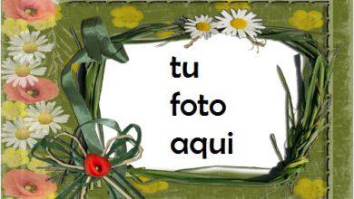Las Flores Más Bellas Perfumadas Marco Para Foto 390x220 - Las Flores Más Bellas Perfumadas Marco Para Foto