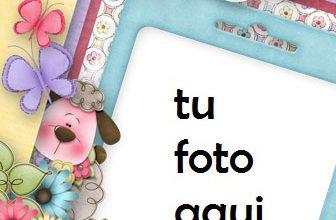 Las Fotos Más Bellas Juntas Marco Para Foto 336x220 - Las Fotos Más Bellas Juntas Marco Para Foto