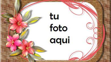 Las Fotos Más Bellas Que Nos Unen Marco Para Foto 390x220 - Las Fotos Más Bellas Que Nos Unen Marco Para Foto
