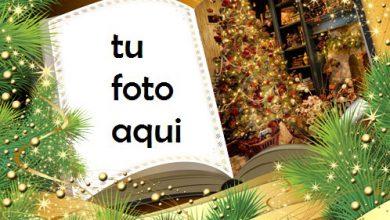 Libro De Año Nuevo Marco Para Foto 390x220 - Libro De Año Nuevo Marco Para Foto