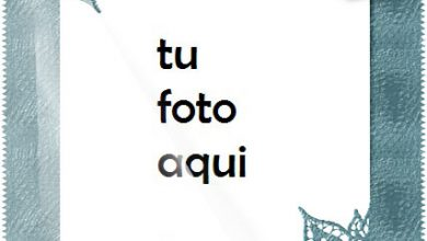 Lista De Álbumes De Fotos Marco Para Foto 390x220 - Lista De Álbumes De Fotos Marco Para Foto