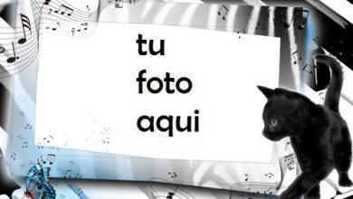 Llaves Marco Para Foto 390x220 - Llaves Marco Para Foto