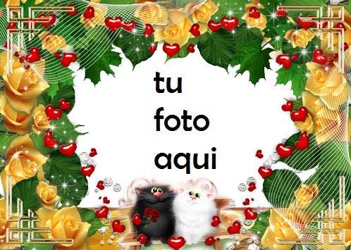Los Gatos Aman El Romance Marco Para Foto - Los Gatos Aman El Romance Marco Para Foto