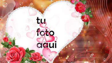 Photo of Los Momentos Más Felices Hermosos Corazones Y Hermosas Flores Rojas Marco Para Foto