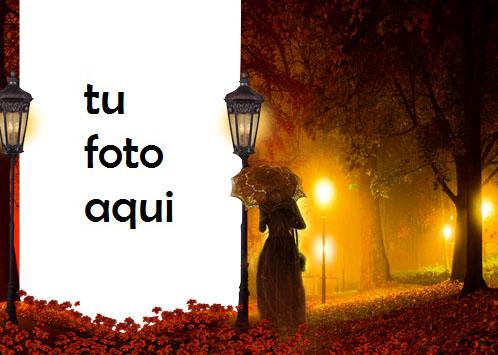 Luz Misteriosa En La Noche De Otoño Marco Para Foto - Luz Misteriosa En La Noche De Otoño Marco Para Foto