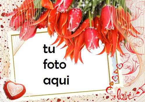 Majestad las fotos más bellas de encantador y romántico Marco Para Foto - Majestad las fotos más bellas de encantador y romántico Marco Para Foto
