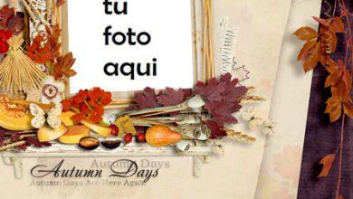 Marco Para Foto Días de otoño Otoño Marcos 390x220 - Marco Para Foto Días de otoño Otoño Marcos