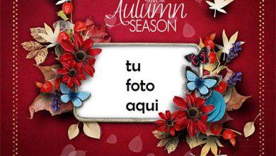 Marco Para Foto Disfruta la temporada de otoño Otoño Marcos 390x220 - Marco Para Foto Disfruta la temporada de otoño Otoño Marcos