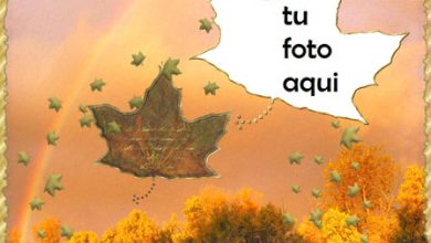 Marco Para Foto Paisaje de otoño Otoño Marcos 390x220 - Marco Para Foto Paisaje de otoño Otoño Marcos