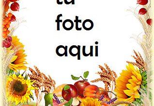 Marco Para Foto Regalos de otoño Otoño Marcos 318x220 - Marco Para Foto Regalos de otoño Otoño Marcos