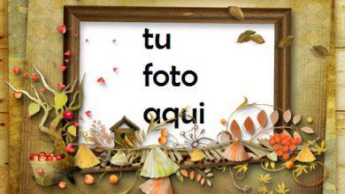 Marco Para Foto Retrato de otoño Otoño Marcos 390x220 - Marco Para Foto Retrato de otoño Otoño Marcos