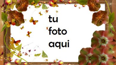 Marco Para Foto Secreto de otoño Otoño Marcos 390x220 - Marco Para Foto Secreto de otoño Otoño Marcos